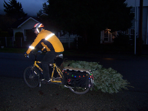 Tree on bike