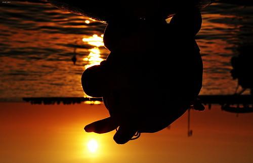 sea tramonto mare simpsons porto 2008 180° trieste platinumphoto jodyart jodysticca spiderpork cretinata