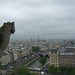 The view from Notre Dame by Marcot77