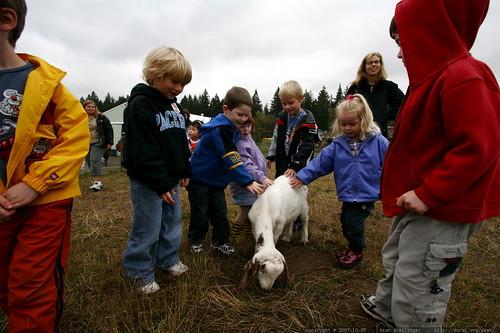 kids petting a goat    MG 4408