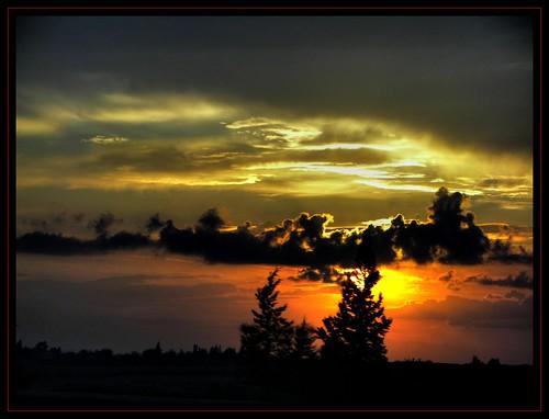 trees sunset sun nature turkey türkiye hdr yol günbatımı ceyhan turkei doğa mywinners abigfave anawesomeshot aplusphoto diamondclassphotographer aycasan mailciler