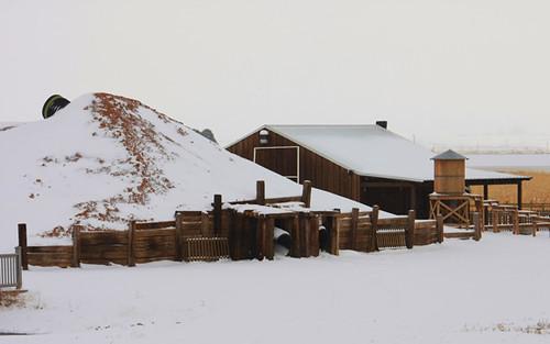 NM-farm