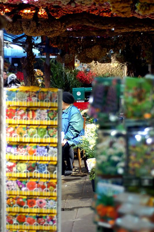Flower shop @ Amsterdam