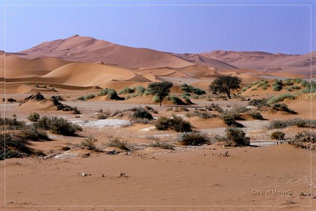 Namib desert by chris merwe