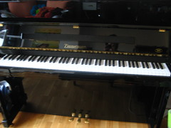 computer component(0.0), string instrument(0.0), electronic device(0.0), nord electro(0.0), fortepiano(0.0), yamaha sy77(0.0), electronic keyboard(0.0), music workstation(0.0), electric piano(0.0), digital piano(0.0), electronic instrument(0.0), string instrument(0.0), celesta(1.0), piano(1.0), musical keyboard(1.0), keyboard(1.0), player piano(1.0),