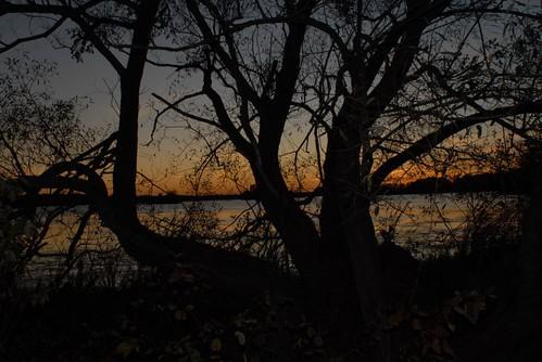 trees sunset sky lake ontario black nature water night rural portland evening willow rideaulake viewonblack