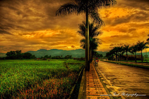 Ciwidey orange sky