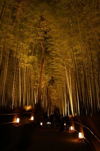 Kyoto Arashiyama Hanatōro 2007