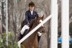 Winter Showjumping CCVM 2017