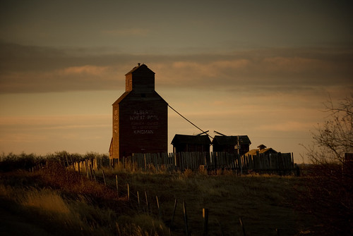 Kingman elevator at dawn