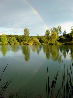 Rainbow in the pond
