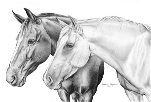 how to draw a two horse
