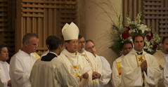 ritual, presbyter, deacon, clergy, priest, bishop, priesthood, nuncio, person, bishop, ceremony,