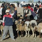 Karakol Animal Market, Boy Selling Sheep - Kyrgyzstan