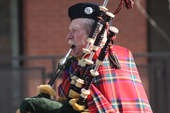 musician, tradition, performance, bagpipes,