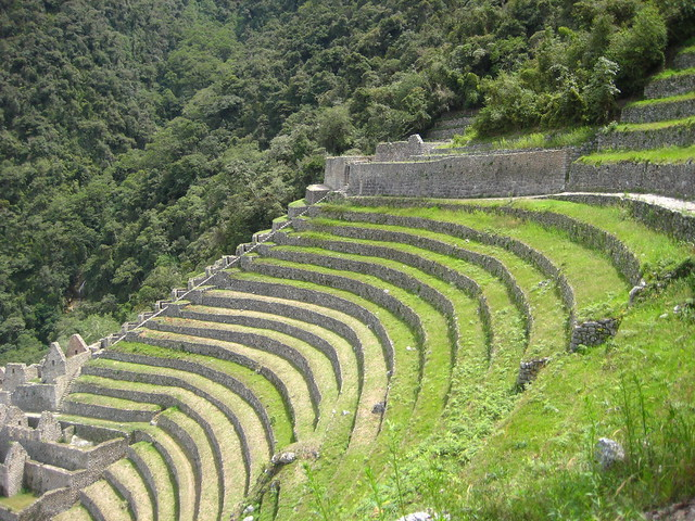 Inca farming terrace flickr photo sharing for Terrace cultivation