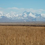 Lenin Peak, Autumn Fields - Sary Tash to Sary Moghul, Kyrgyzstan