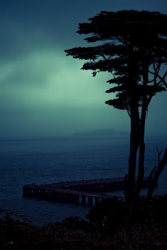 sanfrancisco california trip viaje blue sea usa tree azul arbol mar explore alcatraz