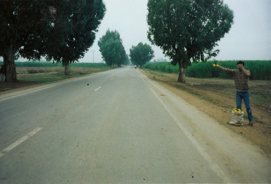 scan0992-4