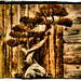 My Bonsai Challenge Entry by ArtByChrysti