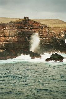 El Soplador - Punta Suárez, Isla Española