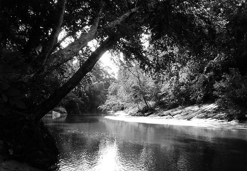 railroad train bridge spring creek houston harris county texas landscape cmwdblackandwhite black white blackandwhite blackwhite cmwd bw pontist united states north america