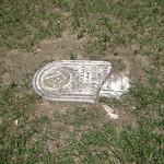 Fallen Grave