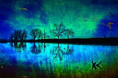 ScenicScapes