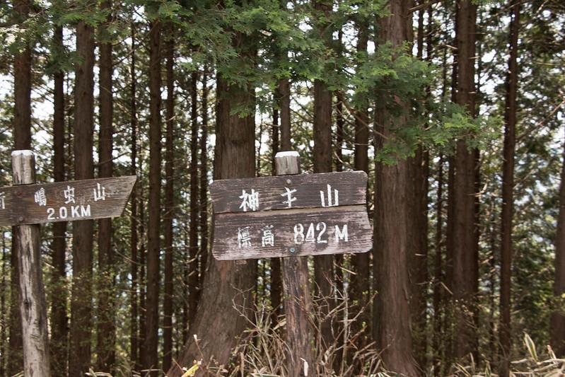 20150425-鳴虫山-0130.jpg
