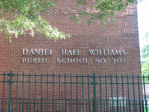Daniel Hale Williams PS 307
