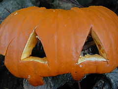 carving(0.0), autumn(0.0), pumpkin(1.0), halloween(1.0), calabaza(1.0), winter squash(1.0), close-up(1.0), jack-o'-lantern(1.0), cucurbita(1.0),