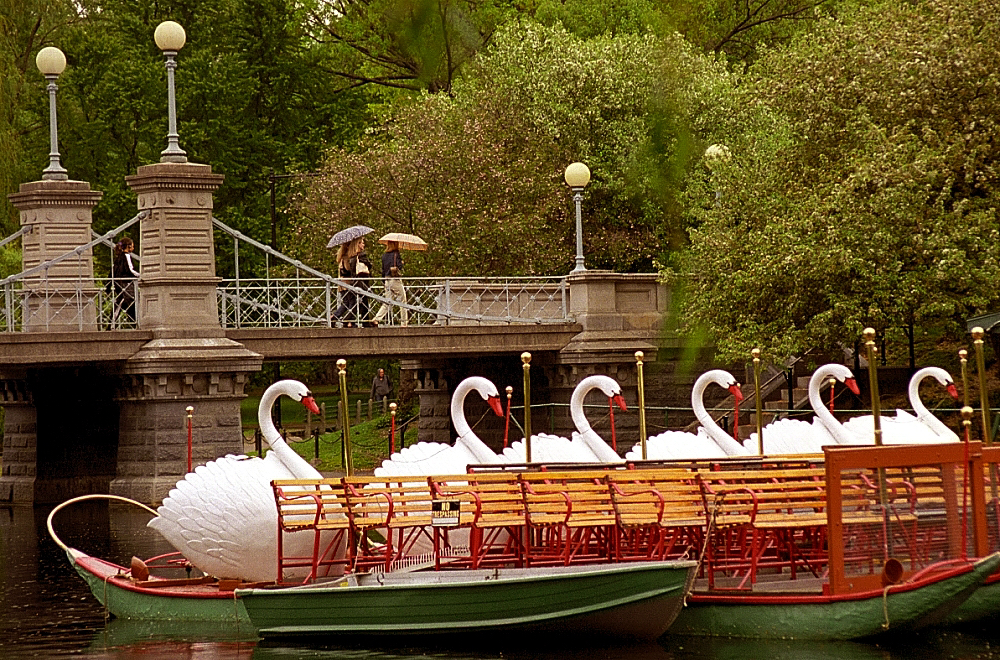 Boston public gardens swan boats flickr photo sharing Boston public garden map