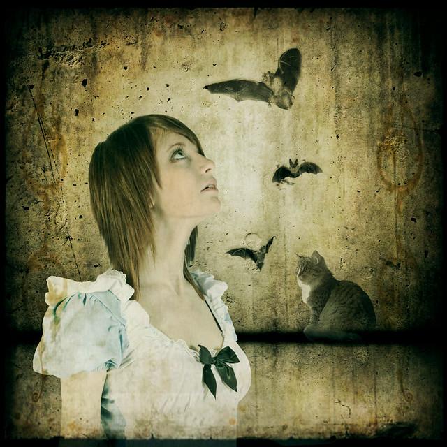 Do Cats Eat Bats Alice In Wonderland