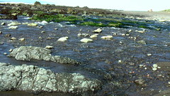 water, river, tide pool, geology, rock,