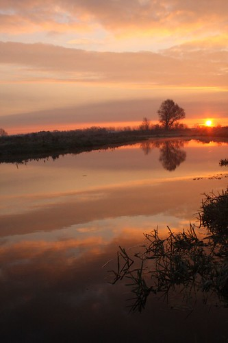 uk sunset red sky orange color colour tree nature water sunrise fen cambridgeshire cambs lakenheath bobhall