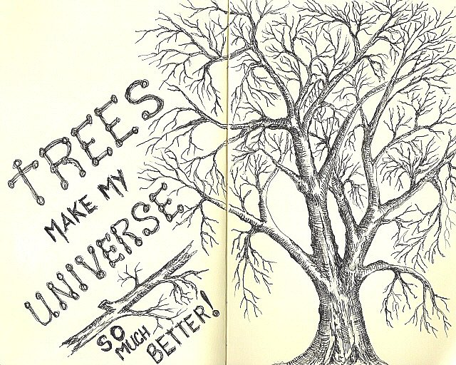 PEN & INK TREE IN MOLESKINE