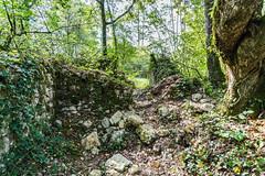 24-Le temps détruit - Photo of Sarliac-sur-l'Isle