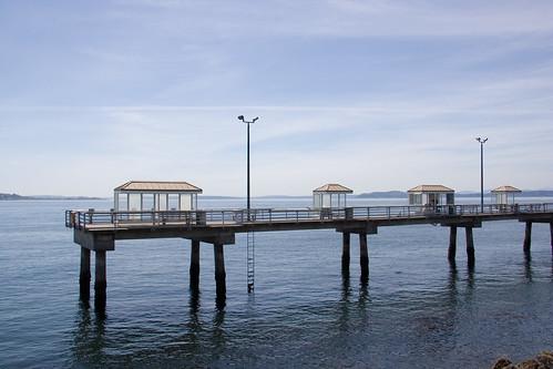 Elliot bay park fishing pier for Seattle fishing pier