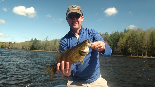 Maine Smallmouth Bass