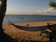 Thailand - Ko Libong Island (Trang Province)