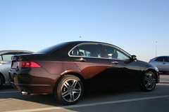 automobile(1.0), automotive exterior(1.0), executive car(1.0), wheel(1.0), vehicle(1.0), automotive design(1.0), rim(1.0), full-size car(1.0), honda(1.0), acura tsx(1.0), sedan(1.0), land vehicle(1.0), honda accord(1.0),