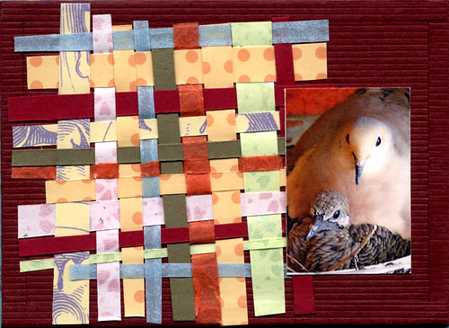 "ATC 164 ""Turtledove IV"""
