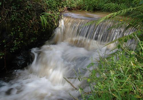 Tigoni Falls