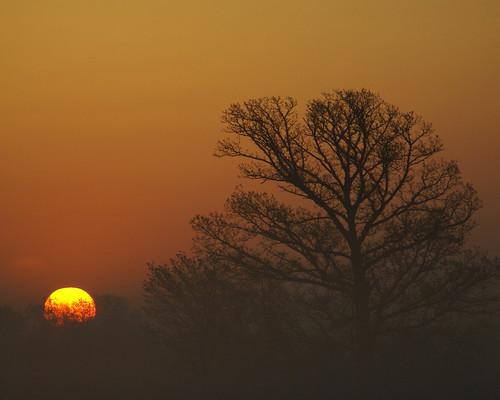 Sunrise Hwy 7