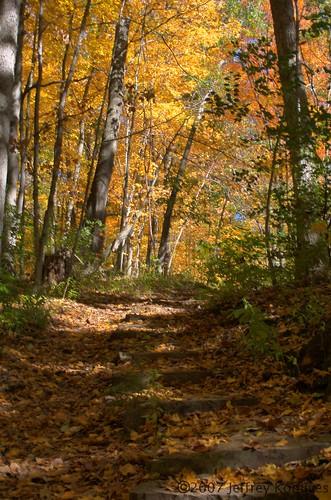fall nature 3xp johnbryanstatepark ©2007jeffreykomives