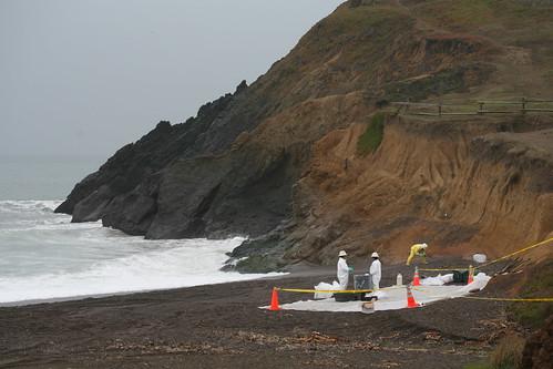 rodeo beach, oil spill IMG_9106