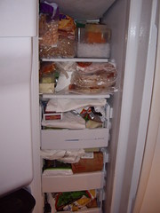 The Freezer in the Fridge - Before