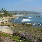 Laguna Beach Trip 22
