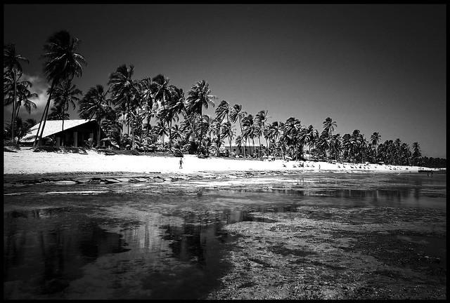 Praia de Forte 3 Yashica T4 Zoom @ 28mm