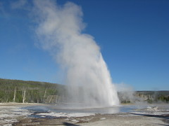 wind wave(0.0), blowhole(1.0), body of water(1.0), geyser(1.0), spring(1.0),